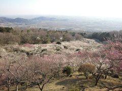 nagahama11-006.jpg