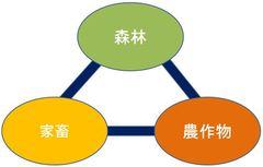 nagahama12-003.jpg