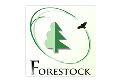 190801_forestock_logo.png