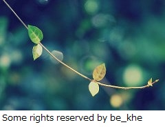 Some_rights_reserved_by_be_khe-1.jpg